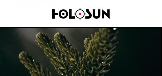 Image Holosun